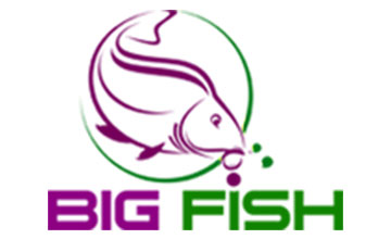 Bigfish.ro